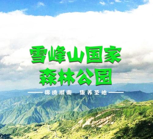 雪峰山国家森林公园